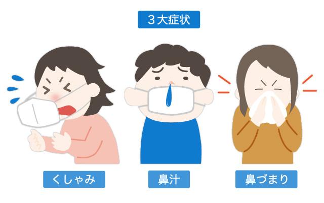 アレルギー性鼻炎の3大症状 くしゃみ、鼻汁、鼻づまり