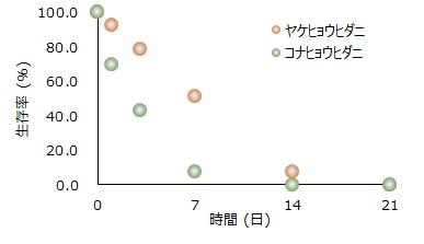 ダニの高温抵抗性を検証図1