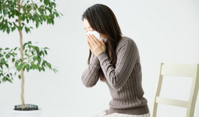 通年性のアレルギー鼻炎について01